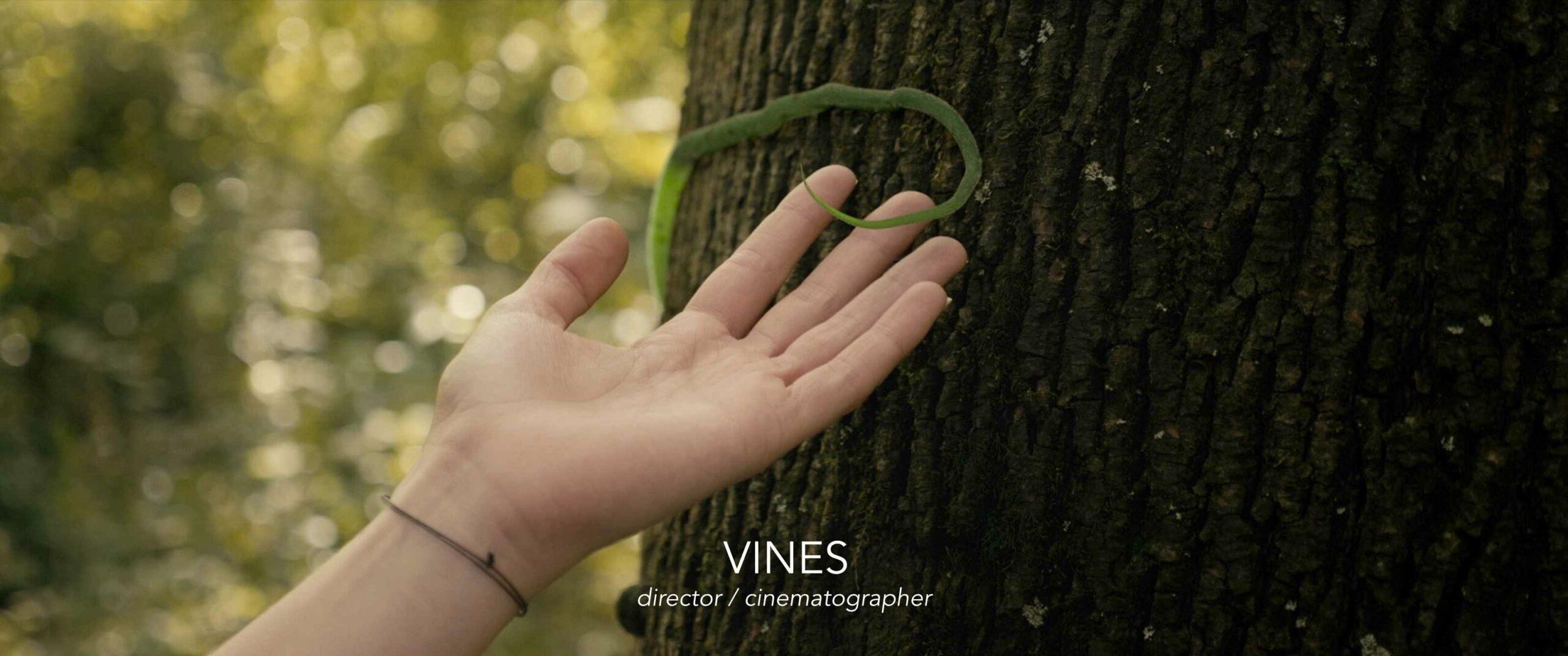 Vines - Regie / Directed by Sören Schulz
